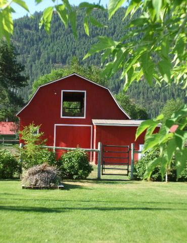 Barns sheds outbuildings on pinterest goat barn for Hobby barn plans